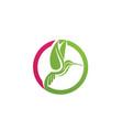 hummingbird logo and symbols iconstemplate app vector image