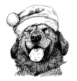 Labrador Retriever 18 vector image vector image
