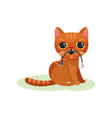 naughty kitten gnawing wire with plug mischievous vector image vector image