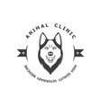 the vintage logotype animal clinic vector image