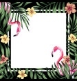 tropical frame flamingo hibiscus leaves black vector image