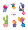 colorful cacti potted plant flowers stickers set vector image