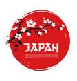 sakura on red background vector image