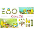 cartoon natural olive elements collection vector image vector image
