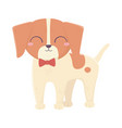 cute llittle dog standing wtih bow tie domestic vector image