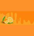 orange on orange background vector image vector image
