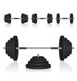 Set of dumbbells weights vector image