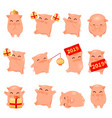 2019 year of the pig cartoon characters vector image