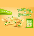 banner with potato chips and greenery vector image