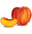 fresh peach with slice isolated on white vector image vector image