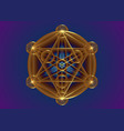 occult mandala metatrons cube gold sacred geometry vector image vector image