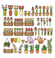 set of colorful flower icon isolated o vector image vector image
