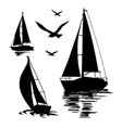 silhouette a sailing boat on a white vector image vector image