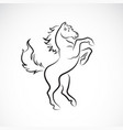 skittish horse design on white background animal vector image