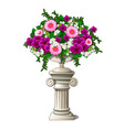 vintage marble vase with flowers in form an vector image vector image