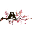 Couple of pigeons vector image