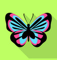 blue pink butterfly icon flat style vector image vector image