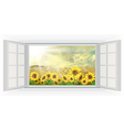 Open windows Summer sun over the sunflower field vector image