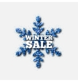 Winter Sale Banner Blue Glitter Snowflake vector image