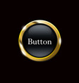 black buttons with metallic frame vector image