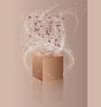 confetti and box vector image vector image