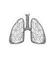 human lungs sketch icon respiratory system vector image