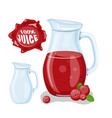 juice with cranberry in a glass jug vector image