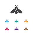 of zoology symbol on bee icon vector image vector image