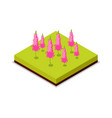 pink flowers isometric 3d icon vector image vector image