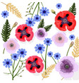 poppy flowers pattern floral background vector image vector image