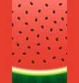 watermelon texture background vector image vector image