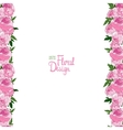border with peonies vector image