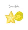 carambola or starfruit exotic fruit icon vector image