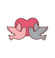 dove bird love graphic vector image vector image