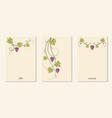 grape vines decoration banners set vector image