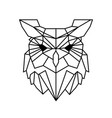 low poly owl design vector image vector image