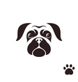Pug dog Funny face with paw print vector image vector image