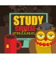 Study via internet card vector image vector image