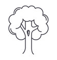 big tree line icon sign o vector image