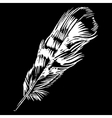 Hand-drawn feather ink handpicked vector image vector image
