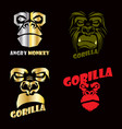 head gorilla set vector image