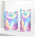 holographic or iridescent neon zipper pouch vector image vector image