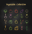 colorful grunge contour vegetable icon set vector image