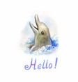 dolphin in water watercolor cute and funny vector image vector image
