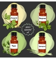 essential oils set 3 vector image vector image