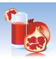 fresh garnet juice vector image vector image