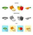 isolated object of vegetable and fruit icon vector image