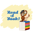 Poster with owl and books vector image