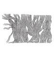 white fibrous tissue vintage vector image vector image