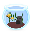 aquarium fish silhouette with vector image vector image